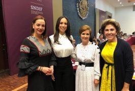 Karina Castro de Domínguez, asistió a la Primera Reunión Nacional de Titulares de los Sistemas Estatales DIF 2019