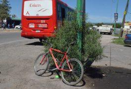 Ciclista lesionado