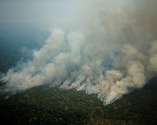 Europa y Latinoamérica protestan contra Bolsonaro por Amazonía